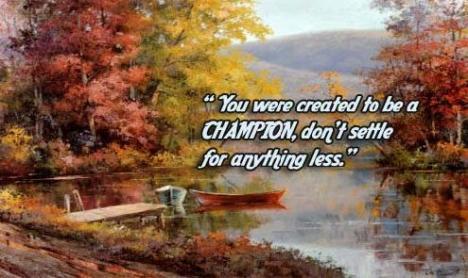 champion-8667