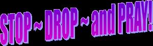 Stop Drop and Pray