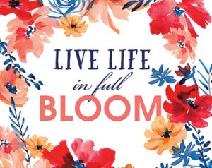 blooming-flowers-live-life4