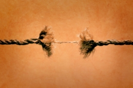divided-kingdom_rope